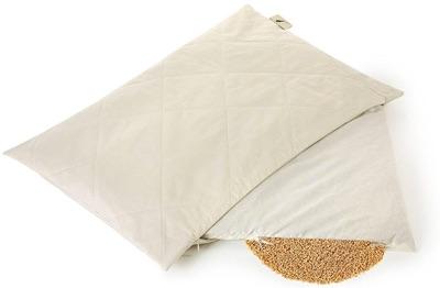 Dream & Dreams Oreiller cervical à la balle de Millet BIO